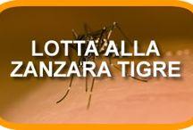 info zanzare / informazioni e rimedi contro le zanzare