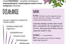 Pożyteczne zioła