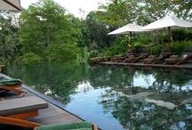 Destination Bali