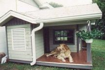bydlení pro domácí mazlíčky