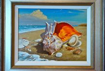 Group Shell Collecting / Share your Shell art, Shell photos, Conchology, Shelling spots and stories!