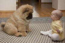 Baby & Pet Photos