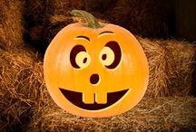 Halloween / by Margaret DeMars
