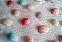 dye seashells