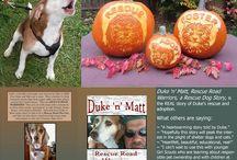Dogs / Puppy / Pet Love