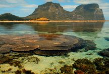"""The Last Paradise - Lord Howe Island / World Heritage listed Lord Howe Island, dominated by two imposing mountains, Mt Lidgbird and Mt Gower, is known as """"The Last Paradise"""" and not without some considerable justification. With unique flora and fauna, beautiful beaches and ,rainforests and an easily accessible world class coral lagoon Lord Howe Island is a must visit place. More Images  at Black Diamond Images Flickr https://www.flickr.com/photos/blackdiamondimages/sets/72157606325575062"""