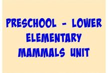 Pre school Unit Studies and Notebooks
