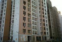 Shree Balaji Associates