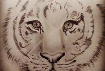 Draw tiger