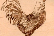 Chickens gr