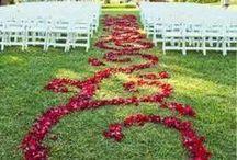 wedding / party