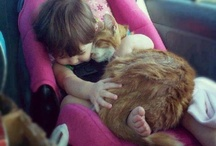 Sevimli dostlarla birlikte uyumak