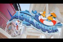 Disney Cruises / All aboard Disney Cruise Lines!