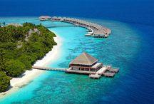 Maldive / Le Maldive non hanno bisogno di presentazione: mare caldo e trasparente, spiagge bianchissime, barriere coralline ricche di pesci multicolori e una variegata flora marina, resort da sogno per una vacanza all'insegna del sole e del relax. http://www.aresviaggi.com/destinazioni/oceano-indiano/maldive/