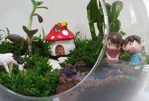 www.yoyomoyo.com / Terrarium, teraryum, minyatür bahçe, peri bahçesi, masal bahçesi ve benzeri çalışmalar ve bunların malzemeleri hakkındadır.