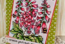 Bees in Foxglove