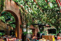 Cofee garden club