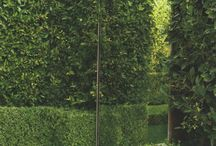 spiegels in de tuin