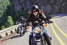 Her Runway is the Road Collection / For the girl who's no angel. | Harley-Davidson Gifts for Her  / by Harley-Davidson