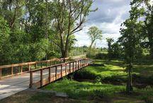 Wheelchair friendly trails in the Rochester area