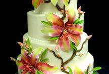 CAKE SEASON EXTRAVAGANZA