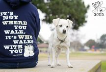 Never Walk Alone / It's not where you walk, it's who walks with you.  / by Dog is Good