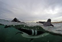 Underwater and Half Half Photography / Great over under underwater photos.
