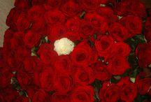 """101 роза / Букет из 101 розы способен без слов все сказать за человека дарящего его.  Студия цветов """"101 роза"""" Краснодар ©"""