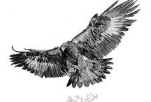 Tattoos Bird