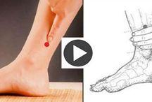 puntos del cuerpo