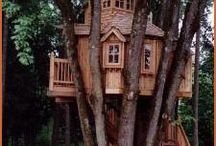 Treehouses / No ... You grow up!