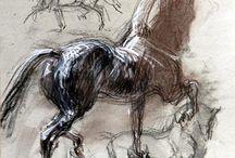 Drawing - Animals