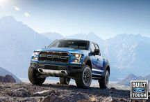 Ford Performance (SVT) / All things Ford Performance