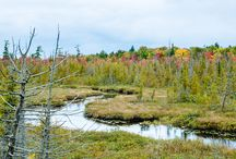 Autumn Splendor in the U.P.