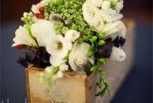 Florals / by Jean Carper