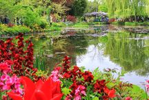 Monet's Garden (Giverny, France)