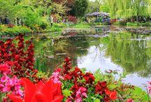 Monet's Garden (Giverny, France)