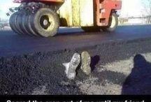 Lol / Funny moments jokes