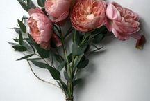 kwiaty Cudne