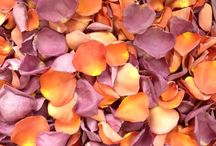 Custom rose petal blends / We custom package every order of freeze dried rose petals, so when we have some pretty blends, we'll post them here!