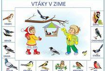 Zvieratká a vtáky v zime