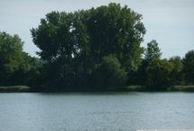 lake lots and such / by Tammy Morkassel