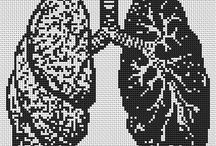 "Cross stitch ""organs"""