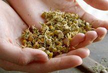 health & herbs...
