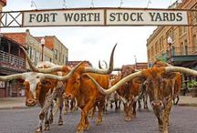 Fort Worth / Things to do in Fort Worth, Texas