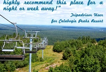 Calabogie Resort