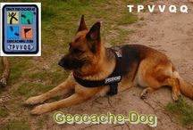 Geo-Dogs / Dedicated to the canine geo-pets that accompany cachers on their geocaching adventures.