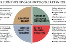 Be a Learning Organization / Organizational learning is the intention practice of collecting information, reflecting on it, and sharing the findings, to improve the performance of an organization.