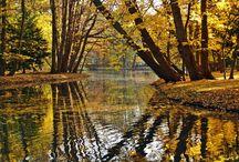 Jesień nad Bałtykiem - Noclegi Trójmiasto / Nie tylko latem Trójmiasto jest piękne, także jesienią przy odrobinie słońca spacerując po naszym cudownym regionie można dostrzec uroki Gdańska cz Sopotu. Zapraszamy do oglądania galerii zdjęć zrobionych jesienią w Trójmieście