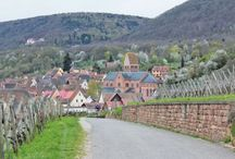 Escapade sur les hauteurs de Gueberschwihr / Le village de Gueberschwihr, un peu plus de 800 habitants, fait partie de « l'âme du vignoble », territoire situé entre Rouffach et Eguisheim. La cité médiévale a conservé son caractère pittoresque, entourée par les vignes et vergers qui s'épanouissent sur les coteaux.
